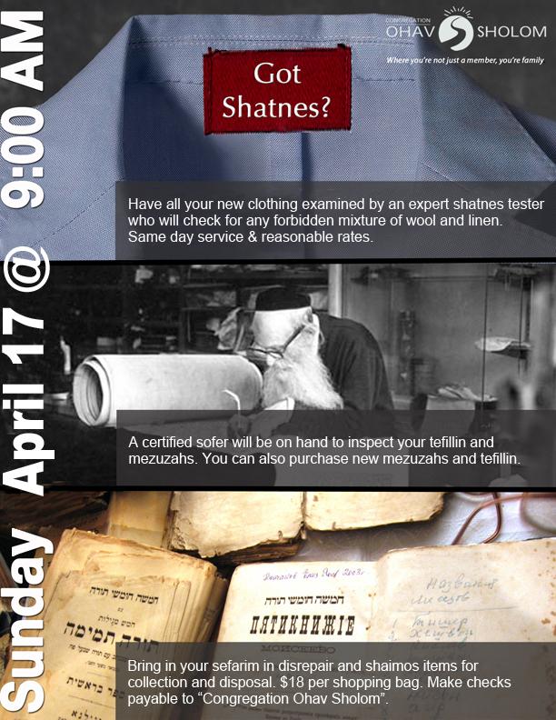 shatnes_'16 _new